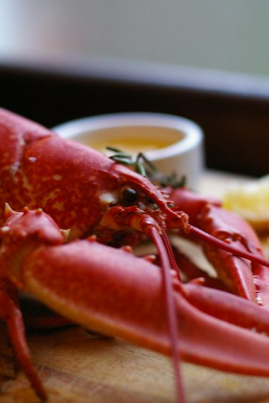 Recipe: Steamed Lobster with melted Garlic Butter