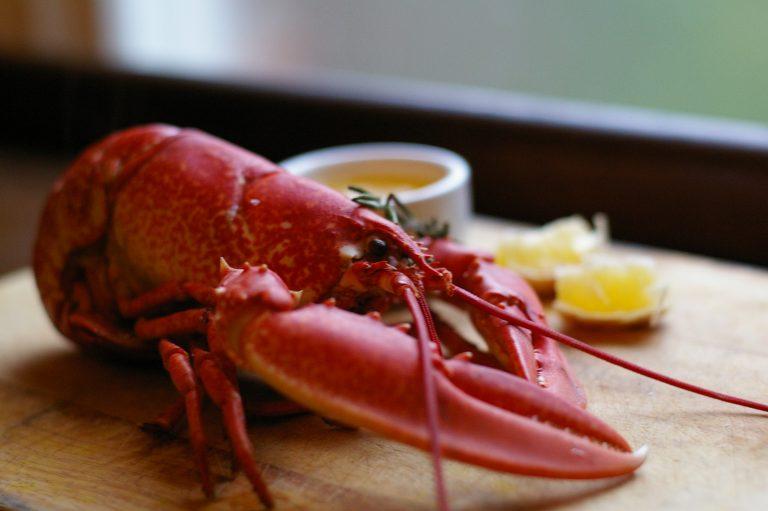 fancy lobster presentation - 768×511